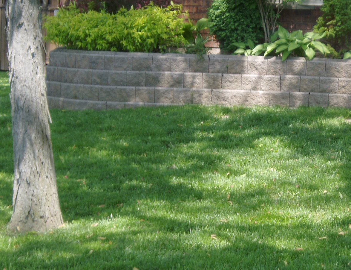 Shady Lawn by Turf King Lawn Care
