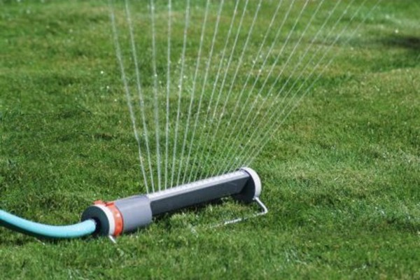 Lawn Care Watering Tips from Turf King
